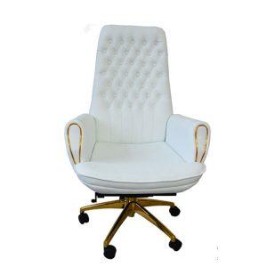 Sản phẩm ghế Ergonomic cao cấp