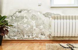 Tìm hiểu dấu hiệu tường bị thấm và cách khắc phục